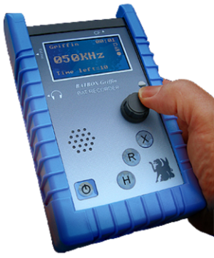 Bat detector - All-digital bat detector with heterodyne, frequency division and time expansion