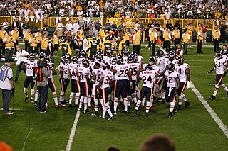 2007 Chicago Bears season NFL team season