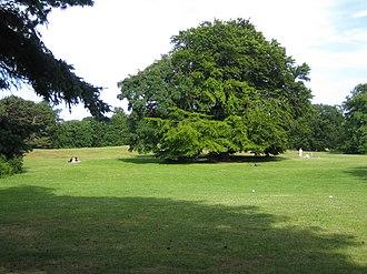 Beijers park - Image: Beijerspark 2