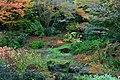 Bellevue Botanical Garden 24 - Yao Garden.jpg