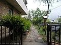 Bimbó út 63, első kert, 2019 Rózsadomb.jpg