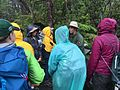 BioBlitz 2015 in Hawaii Volcanoes National Park (17681797978).jpg