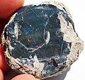 Black precious opal (Tertiary; Wollo Province, Ethiopia) 3 (48163618352).jpg