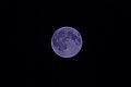 Blue Moon (19983160830).jpg