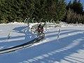 Bobbahn am Meliskopf - panoramio.jpg