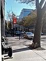 Boulevard Saint-Laurent 29.jpg