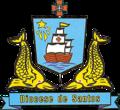 Brasão Diocese de Santos.png
