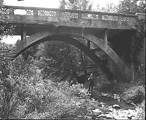 Little Pine Creek (Luzerne and Columbia Counties, Pennsylvania) - A bridge over Little Pine Creek in 1982
