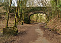 Bridge over railway line at Cann Quarry.jpg