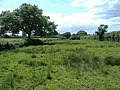 Bridleway, Stoke Common - geograph.org.uk - 438543.jpg