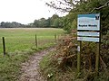 Bridleway entering Roydon Woods from the north, New Forest - geograph.org.uk - 62514.jpg