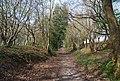 Bridleway heading to Hunter Hill - geograph.org.uk - 1253039.jpg