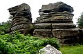 Brimham Rocks from Flickr (D) 04.jpg