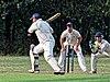 Buckhurst Hill CC v Dodgers CC at Buckhurst Hill, Essex, England 7.jpg