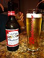 Budweiser beer.jpg