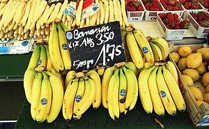 Grand Nain - Majority of the Cavendish bananas sold in the world market belong to the Grand Nain cultivar.