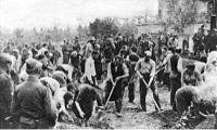 Україна І Німеччина У Другій Світовій Війні