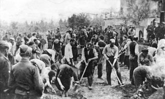 The Holocaust in Ukraine - Jews digging their own graves. Storow, July 4, 1941