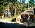 Bunker Frauenwald.jpg