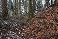 Burg Bermatingen-8698.jpg