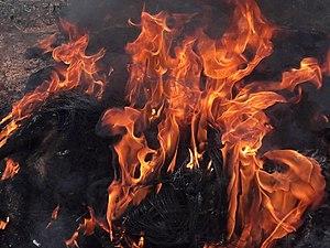Burnin' (instrumental) - Image: Burnin
