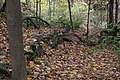 Buttermilk Falls - panoramio (22).jpg