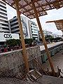CDG CARTI.jpg