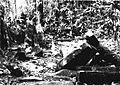 COLLECTIE TROPENMUSEUM Ruïne in het bos bij de rubber- en theeplantage Goenoeng Manik omgeving Lampegan TMnr 60016459.jpg