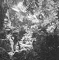 COLLECTIE TROPENMUSEUM Vrouwen op een pad bij Klungkung TMnr 60030175.jpg