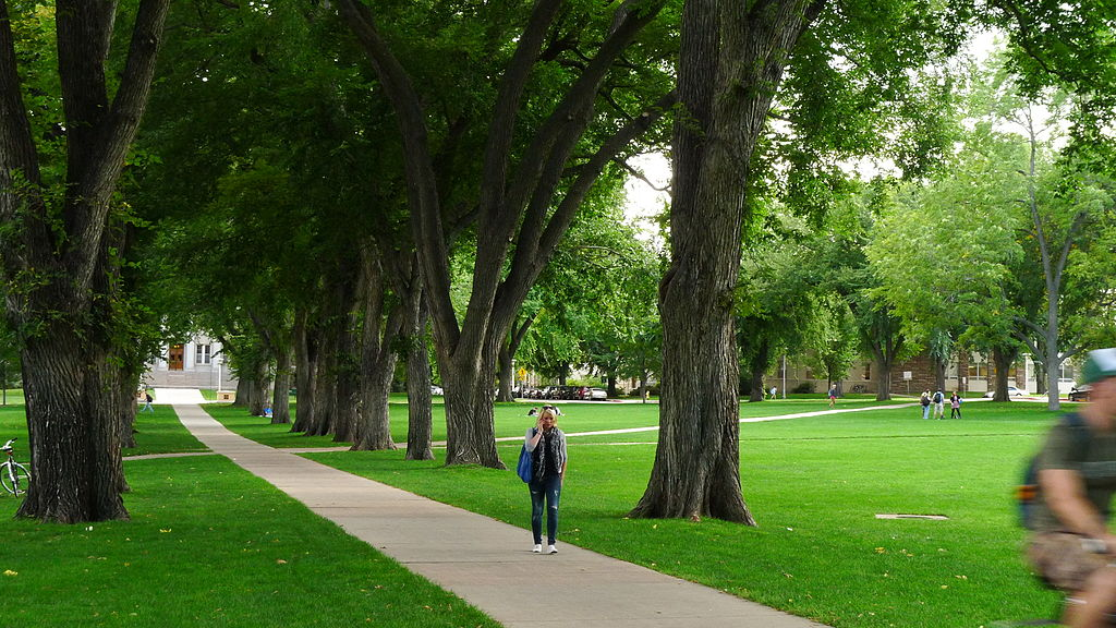 Boulder-landscape2012-team