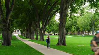 Colorado State University - The Oval, at the heart of the CSU campus
