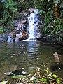 Cachoeira próximo ao Morro Anhangava - panoramio (1).jpg