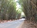 Caminhos do Sol, Itatiba - panoramio.jpg