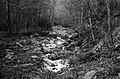Camp Creek State Park Campbell Falls Wv Bw (237616245).jpeg