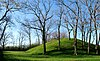 Campbell Mound