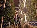 Cannabis tourists in a vertical grow facility.jpg