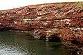 Cape Tryon Cliffs & Caves (22286563325).jpg