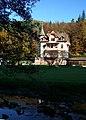 Castle - panoramio (12).jpg