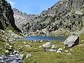 Catalonia pastures dins el parc nacional aiguestortes.jpg