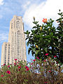 Cathedral of Learning (3860719240).jpg