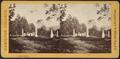 Cemetery, by Seward, H. W. (H. Walton), d. 1871.png
