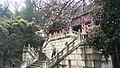 Changshu, Suzhou, Jiangsu, China - panoramio (840).jpg