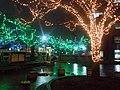 Christmas illumination in Hirosaki - panoramio (1).jpg