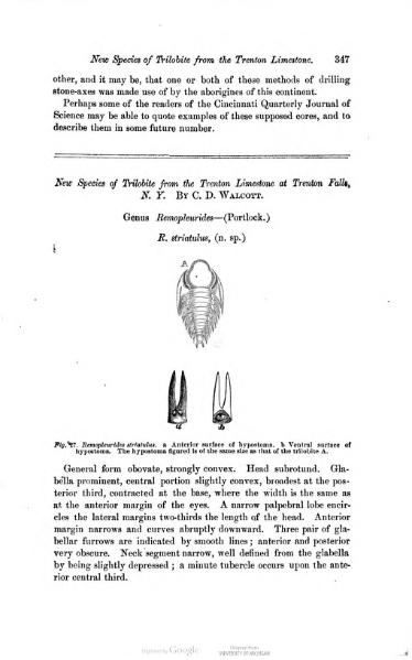 File:Cincinnati Quart. J. Sci. 2 347-349.djvu