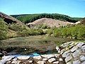 Clydach Vale Country Park - geograph.org.uk - 406882.jpg