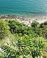 Coastal View in Duino, Italy.jpg