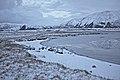 Cold - panoramio.jpg