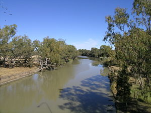 Barwon River (New South Wales) - Barwon River at Collarenebri.