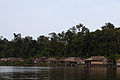 Comunidad Warao.jpg