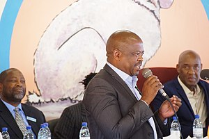 BotswanaPost - Cornelius Ramatlhakwane (CEO Botswana Post), Speaking at the Kgotla meeting in Masunga for the World Telecommunications and information Society day 2017